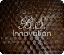 About B.S. Innovation
